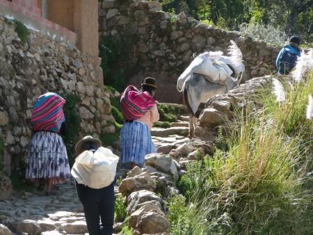 Auch der Esel hilft mit