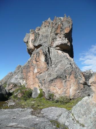 Das Rhinozeros - Highball, 12 m
